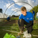Just the Job and the Poly Tunnel